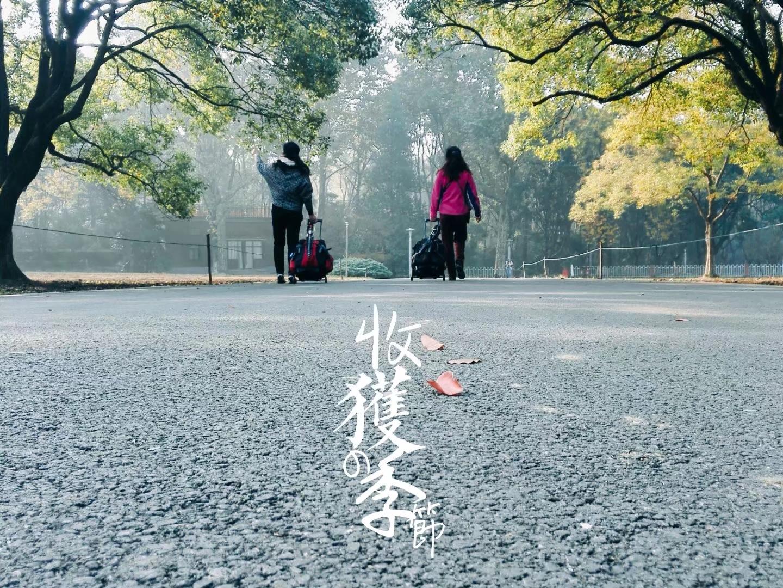 秋天的南京中山植物园